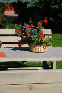 stolik i ławki ogrodowe drewniane